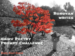 haiku-challenge-image.png