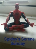 Image result for spideys serene sunday