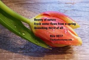 spring-2087400_1920