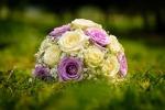 bloom-1869710_1280