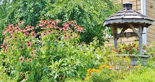 garden-602035_640